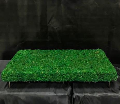 Гробничка из мха 40х80 (+ индивид. размеры)