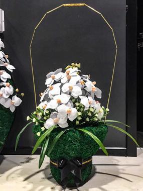 Корзина с орхидеями (высота 70см)